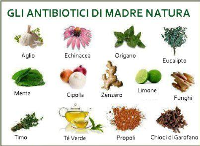Antibiotici di madre natura