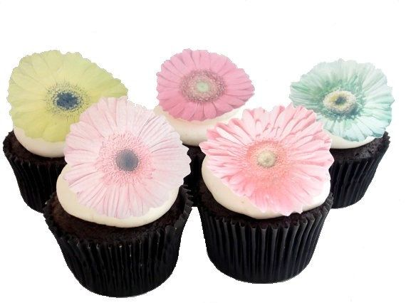EXCLUSIVE  Edible Gerber Daisies  12 Assorted by incrEDIBLEtoppers, $9.95