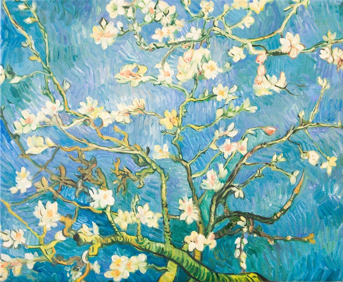 Mandelblüte Van Gogh 9 Best Vincent Van Gogh Images On Pinterest | Color Paints
