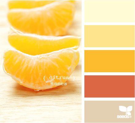 ColorColors Pallets, Colors Schemes For Kitchens, Beautiful Kitchens, Paint Ideas, Kitchens Colors, Design Seeds, Colors Palettes, Citrus Tone, Painting Ideas