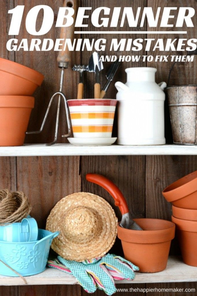 The top 10 mistakes beginning gardeners make and how to fix them-awesome info in the post for anyone who gardens!