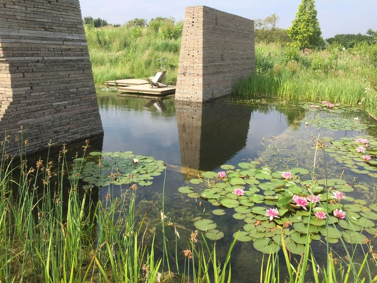 gardenSwimm zwemvijver Superieur, ontwerp Vis a Vis ontwerpers
