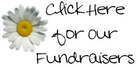 Wages Adoption Fundraisers ~ include jewelry, aloe butter, Christmas ornaments, all natural body butters & soaps, and fun stuff for the kiddos!