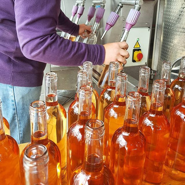 Bottling time.  Today I got to see the new vintage of rosé being bottled at @civettaio  It's a wonderful process to witness.  I person filling the bottles 1 putting the cork and one stacking and moving the wines.  I'm really looking forward to showing this wine at the London wine fair in May. . . . . #bottling #rosé #rose #wine #jacksonandseddon #wineclub #organic #organicwine #italian #italianwine #artisan #winelovers  #tuscany #boutique #smallproduction