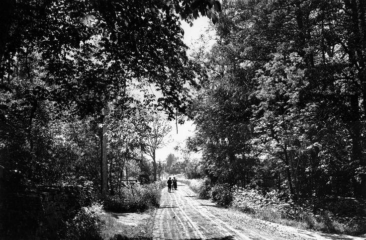 https://flic.kr/p/k3rL7D | Kungslena, Västergötland, Sweden | People on a road in a deciduous forest.   Människor på en väg i en lövskog.    Parish (socken): Kungslena Province (landskap): Västergötland Municipality (kommun): Tidaholm County (län): Västra Götaland  Photograph by: Mårten Sjöbeck Date: 1932 Format: Film   Persistent URL: kmb.raa.se/cocoon/bild/show-image.html?id=16000300028861  Read more about the photo database (in english): www.kms.raa.se/cocoon/bild/about.html