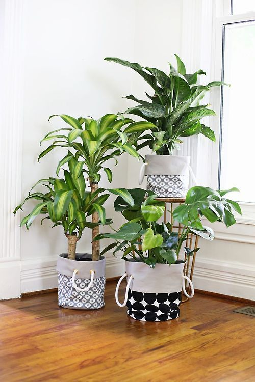 Hide the pot, easy to move, all look the same,  great idea.