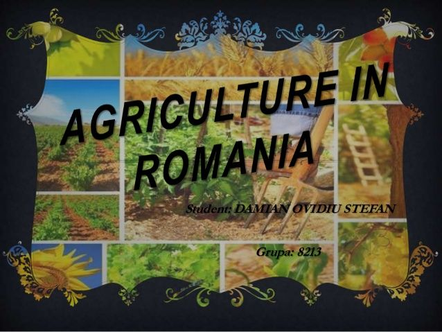 Image result for agricultura romania