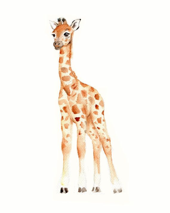 Baby room decor boy, safari nursery prints, elephant nursery wall art, watercolor nursery art, baby giraffe print