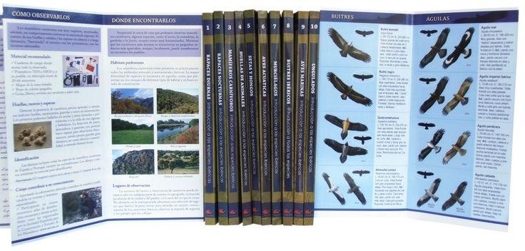 COLECCIÓN COMPLETA Cuadernos de Naturaleza Tundra ( 17 titulos): 1- Rapaces diurnas. 2- Rapaces nocturnas. 3- Mamíferos carnívoros. 4- Huellas de animales. 5- Setas y hongos. 6- Aves acuáticas. 7- Murciélagos. 8- Buitres ibéricos. 9- Aves marinas. 10- Ungulados. 11- Cetáceos. 12- Halcones ibéricos. 13- Aves de parques, pueblos y ciudades. 14- Libélulas. 15- Árboles. 16- Invertebrados terrestres (excepto insectos). 17- Mariposas diurnas.