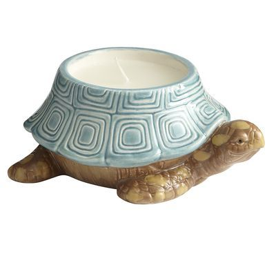 Sea Air Turtle Filled Candle