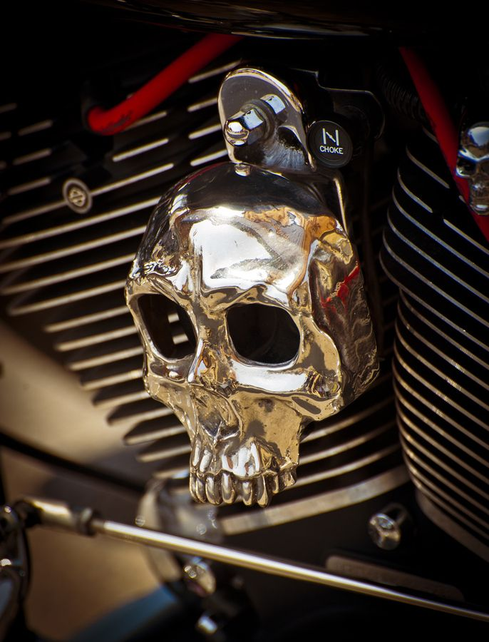 Custom Horn Covers ....this one and Many more . Made in the USA , by my bro, Dennis Hancq....  ChromeDome Motorcycles of Arizona...