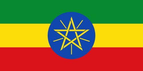 República Democrática Federal de Etiopía Capital Addis Abeba 84.320.987 habitantes (2012) Idioma Amárico…