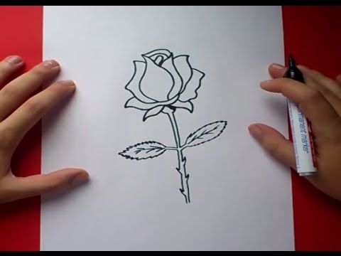 189 best images about drawing tutorials flowers and - Como pintar una rosa paso a paso ...