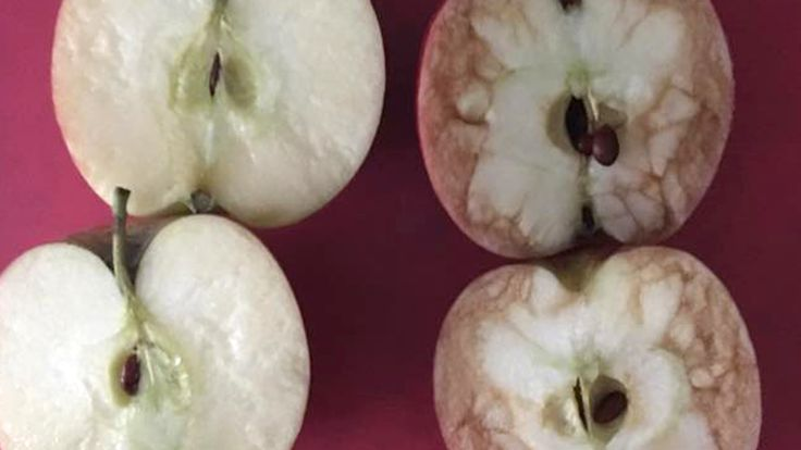A teacher used a pair of apples to show her young students how hurtful words can be.