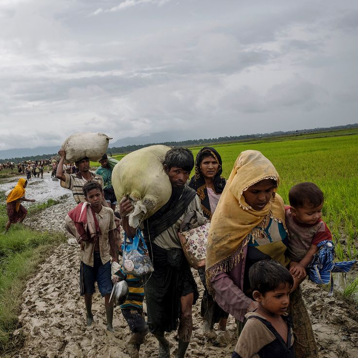 Photographer William Daniels documented the exodus of the Rohingya as they fled across the Myanmar border into Bangladesh, seeking shelter from rape, torture and indiscriminate killings. See Daniels's photographs at time.com/exodus-of-the-stateless  Photographs by William Daniels (@williamodaniels)—@panospictures