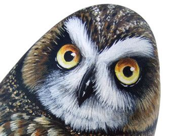 Original Hand Painted Northern Hawk Owl Rock Surnia Ulula