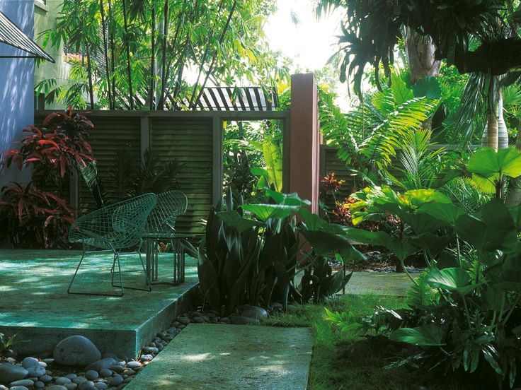 99 best images about landscaping ideas on pinterest for Jungle garden design ideas