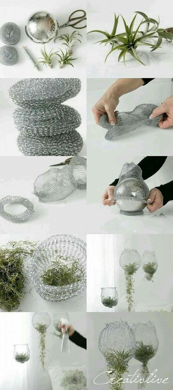 DIY Blumenampel für Tillandsien aus Topfschwämme…