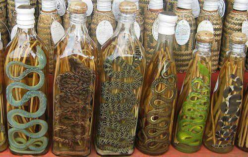 Vietnamese Snake wine- I'll Passssssssssssssssss