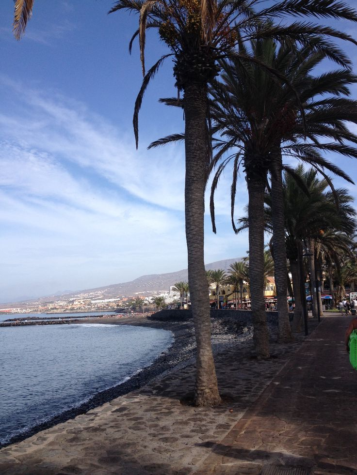 PLAYAS DE LAS AMERICAS / / TENERIFE - Canary Island