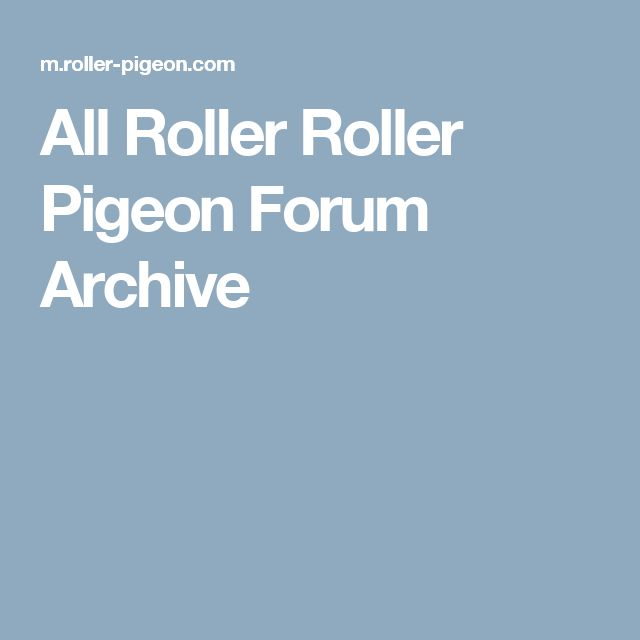 All Roller Roller Pigeon Forum Archive