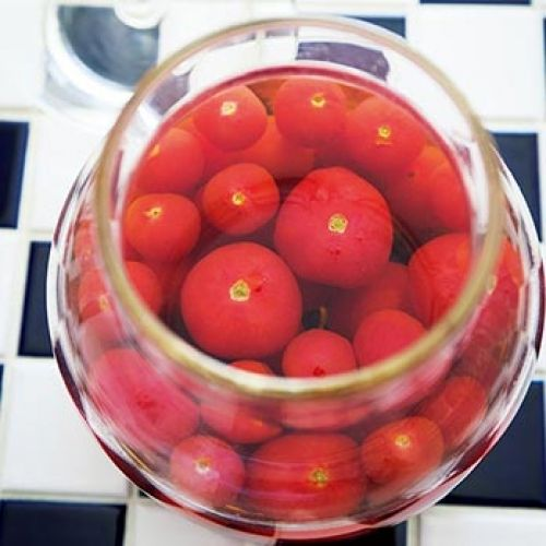 トマトのおひたし 材料(作りやすい分量) ミニトマト(大・小)…各1パック(400g)  [A] だし汁…1と1/2カップ みりん…大さじ2 薄口しょうゆ…大さじ2 【作り方】 [1] 容器に[A]を合わせる。  [2] トマトはへたを取り、先端に浅く切り込みを入れる。  [3] 沸騰した湯にトマトを入れ、すぐに冷水にとり、水気をきって皮をむく。  [4] [1]にトマトをひたし、ラップをして冷蔵庫に入れて冷やし、味をなじませる。