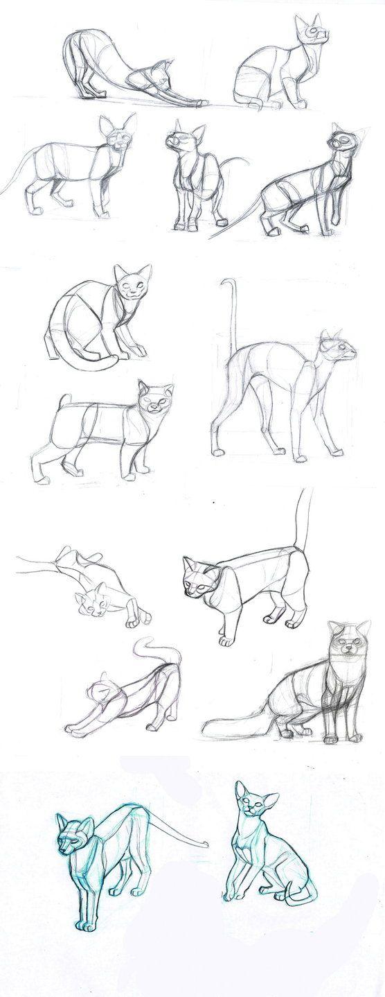 y sigo dibujando gatos... hechos con referencias fotográficas. Done with photo references ------------------------------------------------------------------------------------------------------...