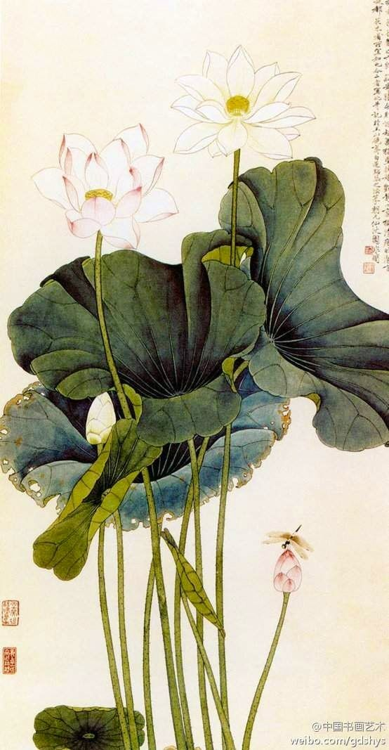 Chinese traditional Lotus painting http://patricialee.me