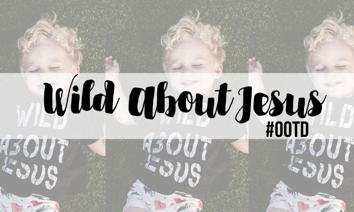 Wild About Jesus blog post