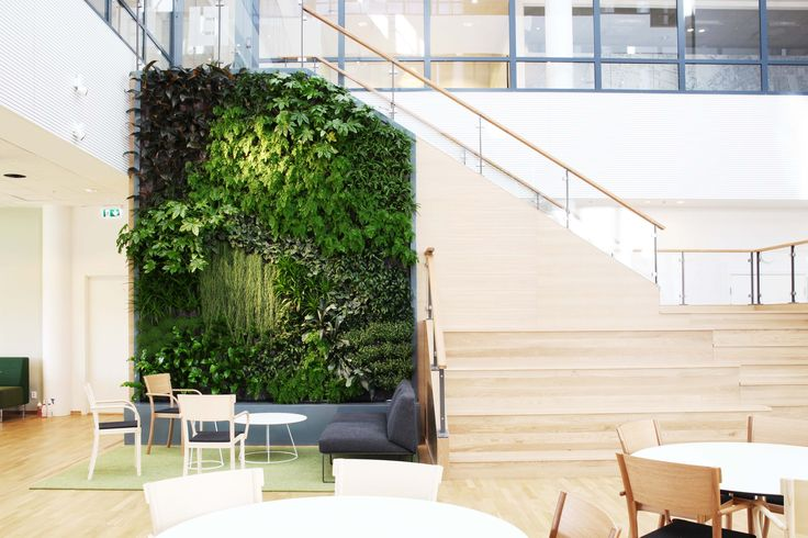 Office design, Stockholm. The plants' colours and brightness create a great and refreshing environment, providing benefits to all the spaces.   Design by Daniel Bell for Greenworks.