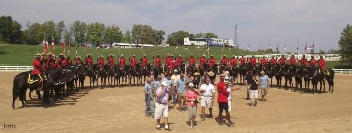 RCMP, horses, horse, musical ride
