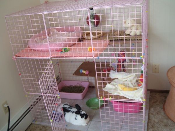17 best images about diy rabbit cage ideas on pinterest