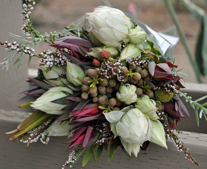 Resendiz Brothers Protea Growers; Blushing Bride, Berzelia, Calycina, and Leucadendron.