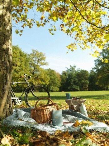 天気のいい日は、近くの公園や手近なスポットまで、お散歩やサイクリングを兼ねて外ごはん。自然を感じながら、日常を忘れて思いっきりリフレッシュ!