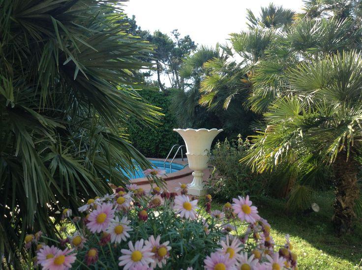 Luxury Holiday Tuscany