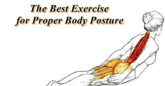 fitness exercise guide better posture exercises