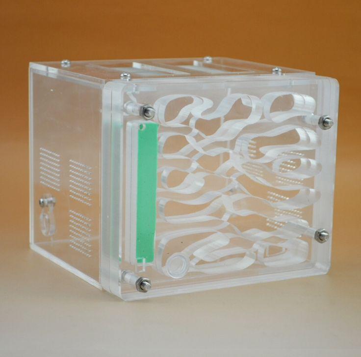 Муравьиная ферма: AF-2 (Cube) Габариты: 120х120х100мм  Описание: комбинируемый (три входа/выхода), Акриловая ферма, хорошая вентиляция (возможность сквозняка в арене), компактность, улучшенная/удобная система увлажнения (нано губка)  защита от переувлажнения.  Цена: 1750₽ + доставка до вашего города. #murashdom #murash #мураш #муравьи  #моймураш #муравьидома #мимишныемуравьи #комсомольск #хабаровск #муравьинаяферма