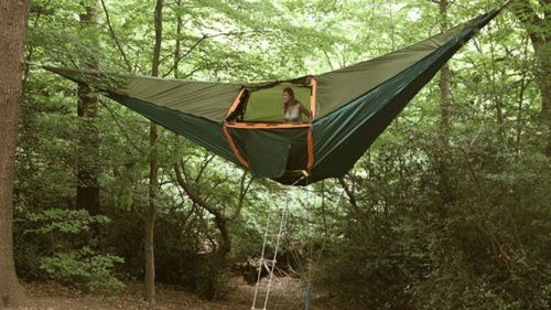 Hammock Tent. I WANT! SO COOL!