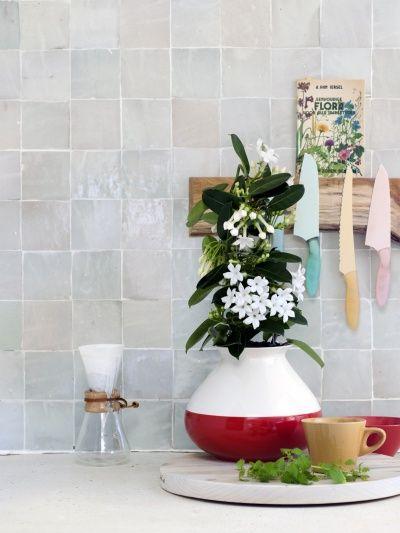 ber ideen zu bl hende zimmerpflanzen auf pinterest. Black Bedroom Furniture Sets. Home Design Ideas