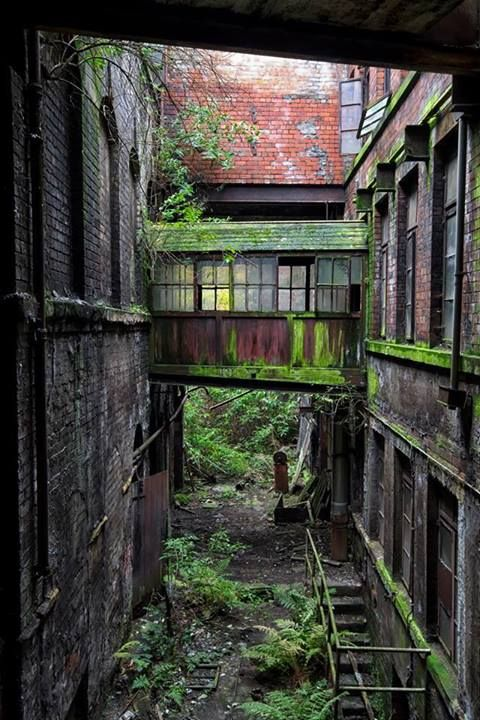 Is love to explore abandoned places like this