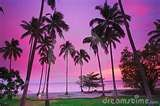 Tropical sunset colors...: Tropical Sunsets, Sunsets Color, Inspiration Color