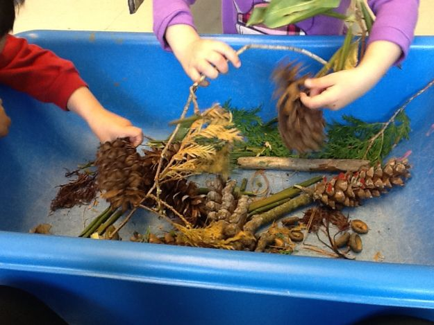 A great way to explore the outdoors, INSIDE!