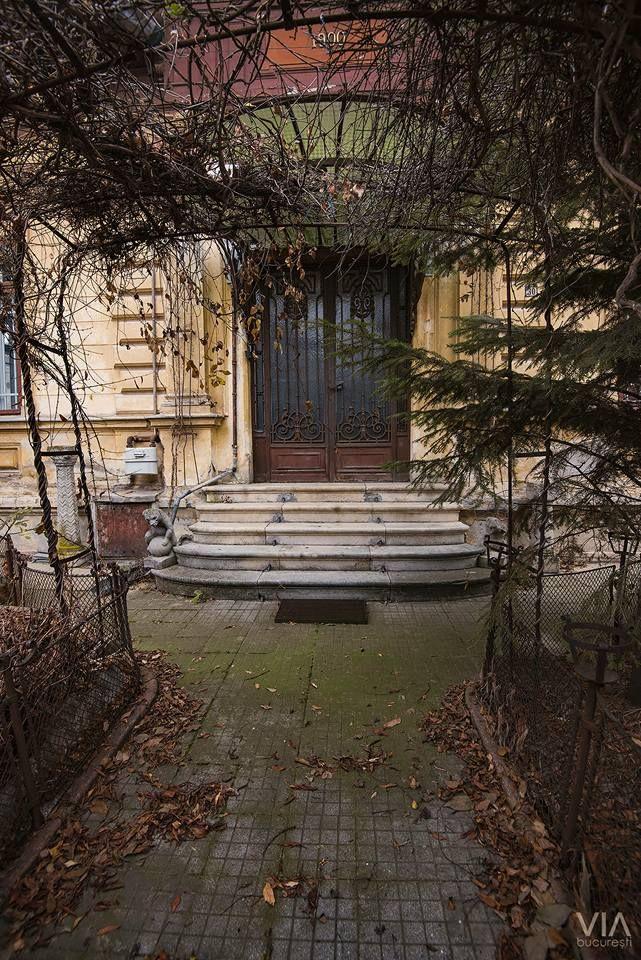 Casele vechi erau vii. Comunicau, prin boltele lor de verdeaţă, cu lumea vegetală. Şi mai toate aveau o grădină, replică măruntă a paradisului.  Foto: Alberto Groșescu