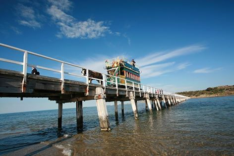 Horse drawn tram over the causeway at Victor Harbor