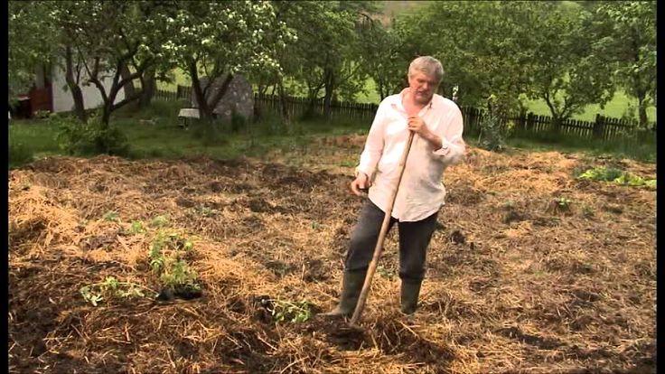 Ember- és környezetkímélő kertművelés