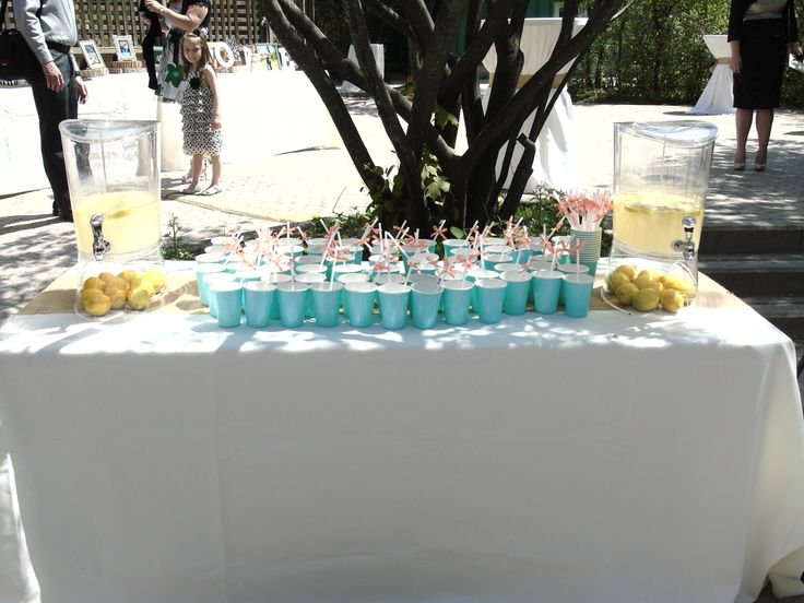 guests thoroughly enjoyed the lemonade stand during cocktail hour for Lima & Daniel's May 17, 2015 wedding