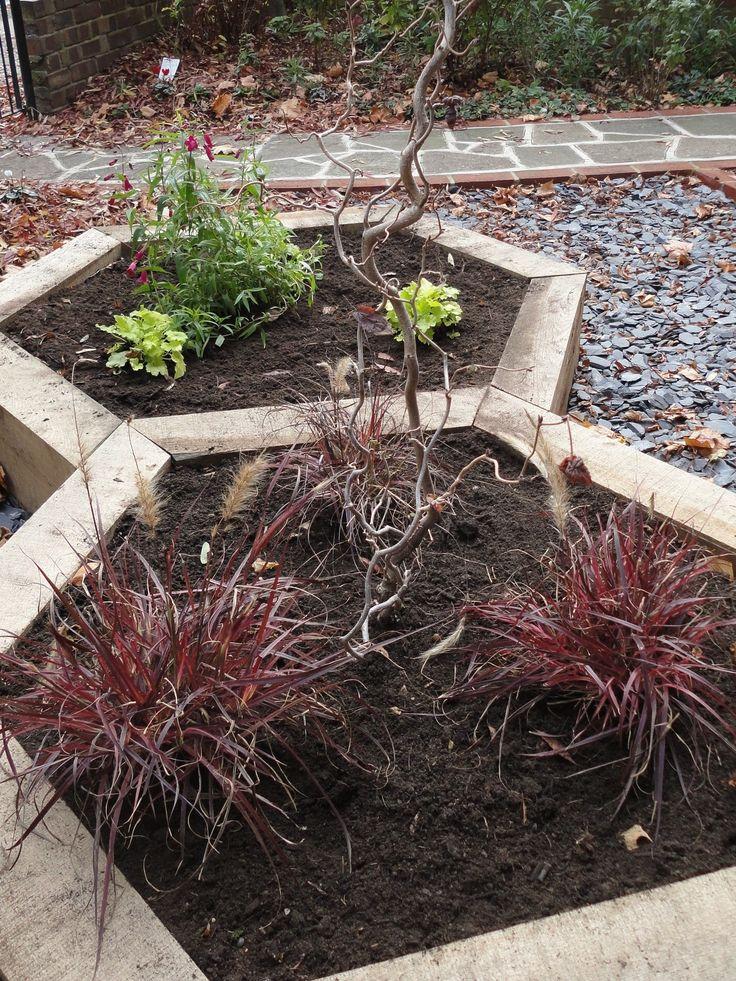 Hexagonal Raised Garden Beds