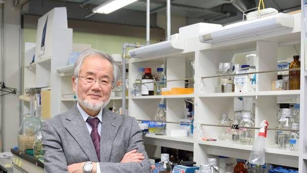 """Nobel para un biólogo que descubrió cómo el cuerpo se """"recicla"""" para sobrevivir"""