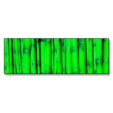 #CUADRO BAMBOO #Lámina fotográfica de medida 30x90 impresa sobre metacrilato de 5mm de grosor. Espectacular acabado en un material muy resistente y original. #Decorar tu hogar u oficina nunca ha sido tan fácil como ahora con nuestra tienda on-line de www.marcospara.com. 46,59€