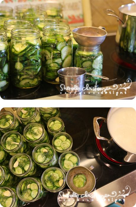 Canning Dill Pickles. Site has other canning stuff.  My second favorite thing to can.  I have the greatest old recipe from my family.  The best